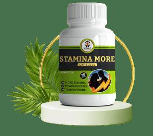 stamina more